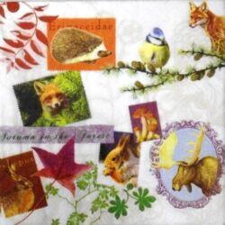 Szalvéta - Az erdő állatai