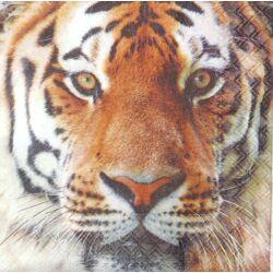 UTOLSÓ DARAB - Tigris
