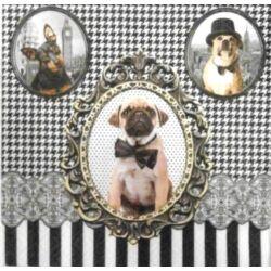 UTOLSÓ DARAB - Nyakkendős kutyusok