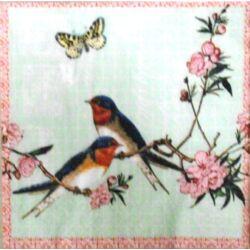 UTOLSÓ DARAB - tavasz madarak