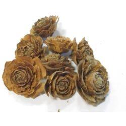 Tobozrózsa, barna