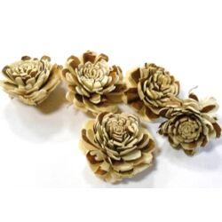 Háncs Rózsa fehér-barna