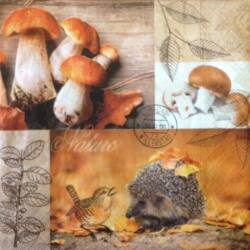 Szalvéta - Őszi erdő