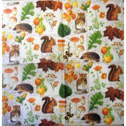 Szalvéta - Őszi állatkák