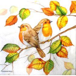 Szalvéta - Vörösbegy ősz