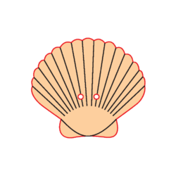 Mini Gomb Fafigura - Kagyló