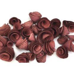 Háncsvirág termés, piros