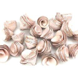 Háncsvirág termés, rózsaszín