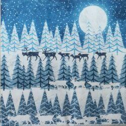 Szalvéta - Téli éjszaka