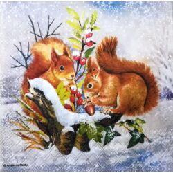 Szalvéta - Éhes mókusok télen