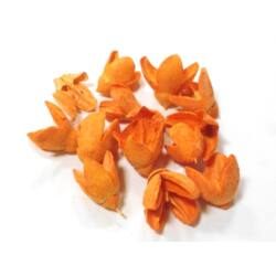 Harangvirág termés narancssárga