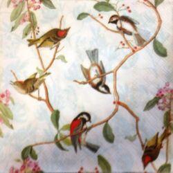 Szalvéta - Énekes madarak
