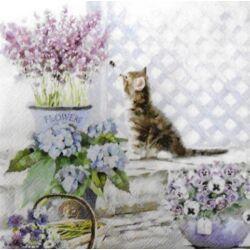 Szalvéta - Cica virágok között