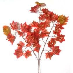 Őszi leveles ág - 1