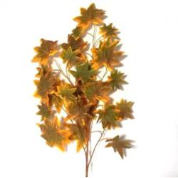 Őszi leveles ág - 2