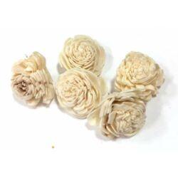 Háncs Rózsa fehér