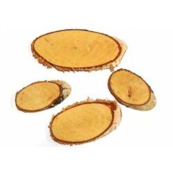 Fa szelet ovális 4db