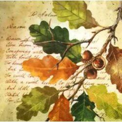 Szalvéta - Tölgyfa levél