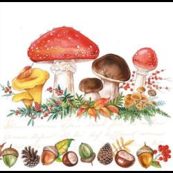 Szalvéta - Gombák