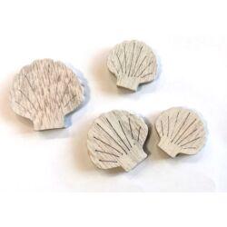 Fafigura -  3D Kagyló