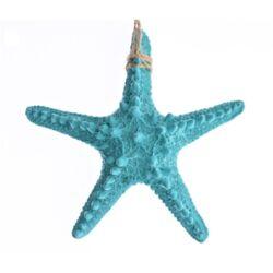 Tengeri csillag, türkizkék 15cm