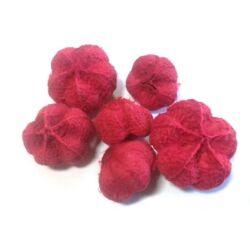 Termés mini fokhagyma, piros