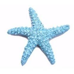 Tengeri csillag 4,8 cm kék