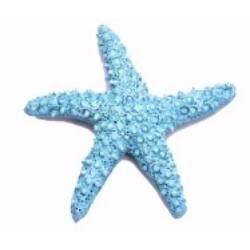 Tengeri csillag 4 cm kék