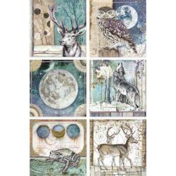 Rizspapír A4 - Cosmos cards