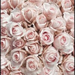 Koktél szalvéta - Rózsa minta