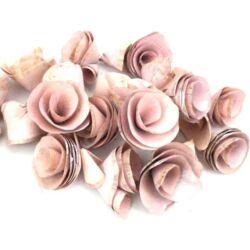 Háncsvirág termés, hamvas rózsaszín