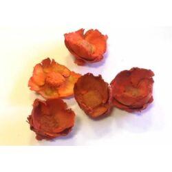 Kókusz virág termés - narancs