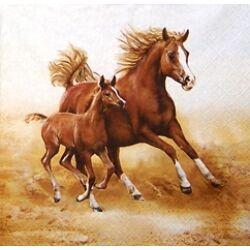 Szalvéta - Vágtató lovak