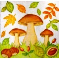 AKCIÓS Szalvéta gombák