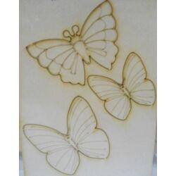 Kreatív Karton 3 pillangó