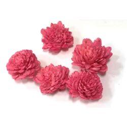 Háncs rózsa, rózsaszín