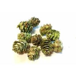 Toboz, hamvas zöld
