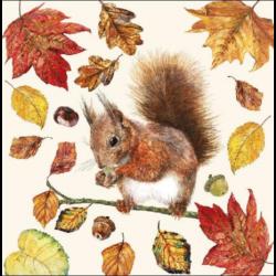 Koktél szalvéta - Falatozó mókuska