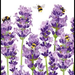 Koktél szalvéta - Levendula és méhecskék
