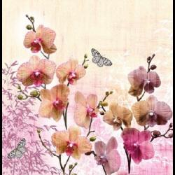 Koktél szalvéta - Orchidea