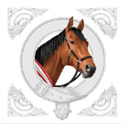 Koktél szalvéta - Ló portré