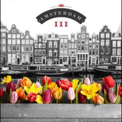 Szalvéta - Színes virágok, Amszterdam