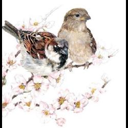 Koktél szalvéta - Verebek cseresznyefa ágon