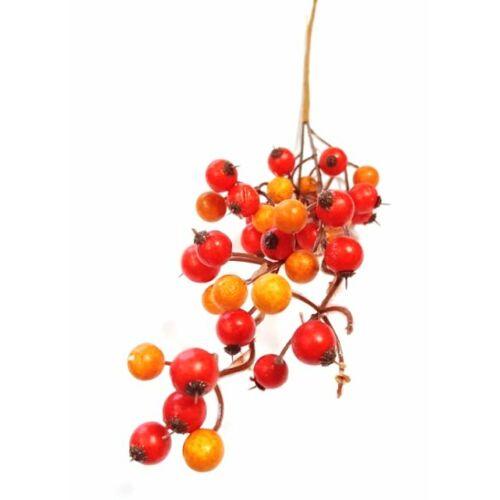 Nagy bogyós ág betűző piros-narancs